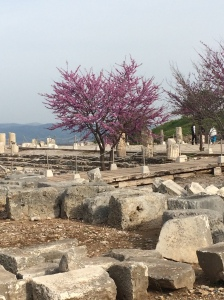 It's hard to capture how big Ephesus is.